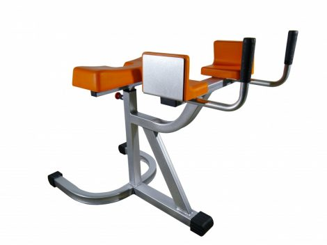 Back flex bench
